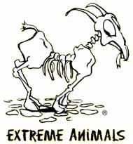 Extreme Animals